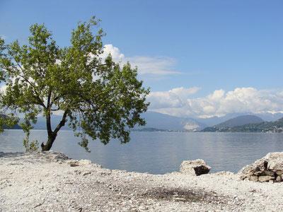 Lago Maggiore Karte.Die Schönsten Strände Am Lago Maggiore